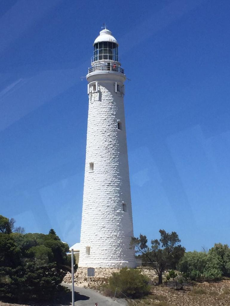 Rottnest Island Tour from Perth or Fremantle including Bus Tour