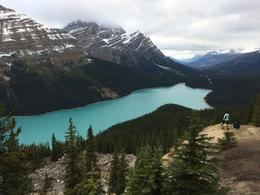 Peyto Lake. , Jennifer E - October 2017