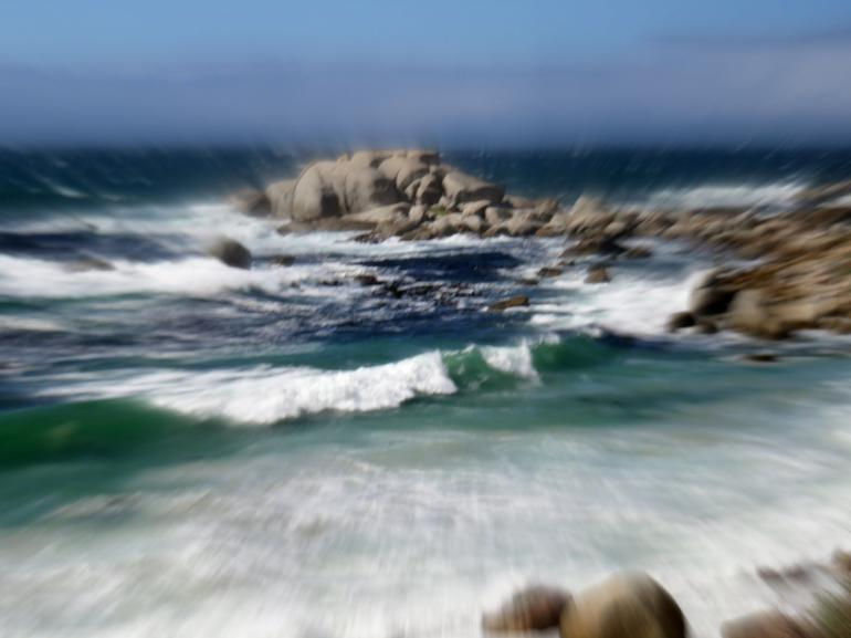 Cape Peninsula Tour from Cape Town photo 21