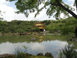 Spectacular view of the Golden Pavilion in Kyoto. - June 2010