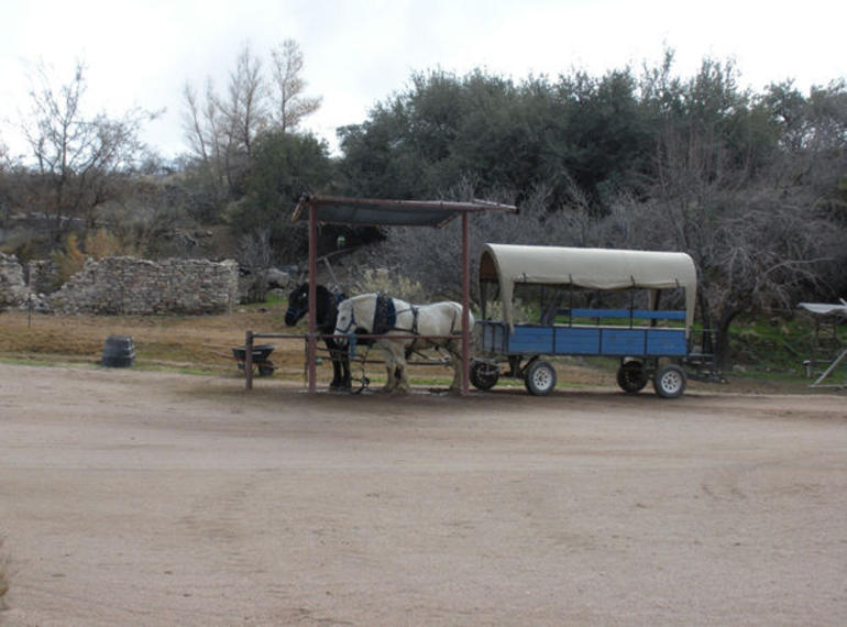 Horse-Drawn Wagon - Las Vegas