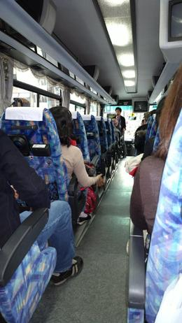 Mount Fuji Bus Ride with Katy, our tour guide. , Lim Pei Pei 佩 - February 2013