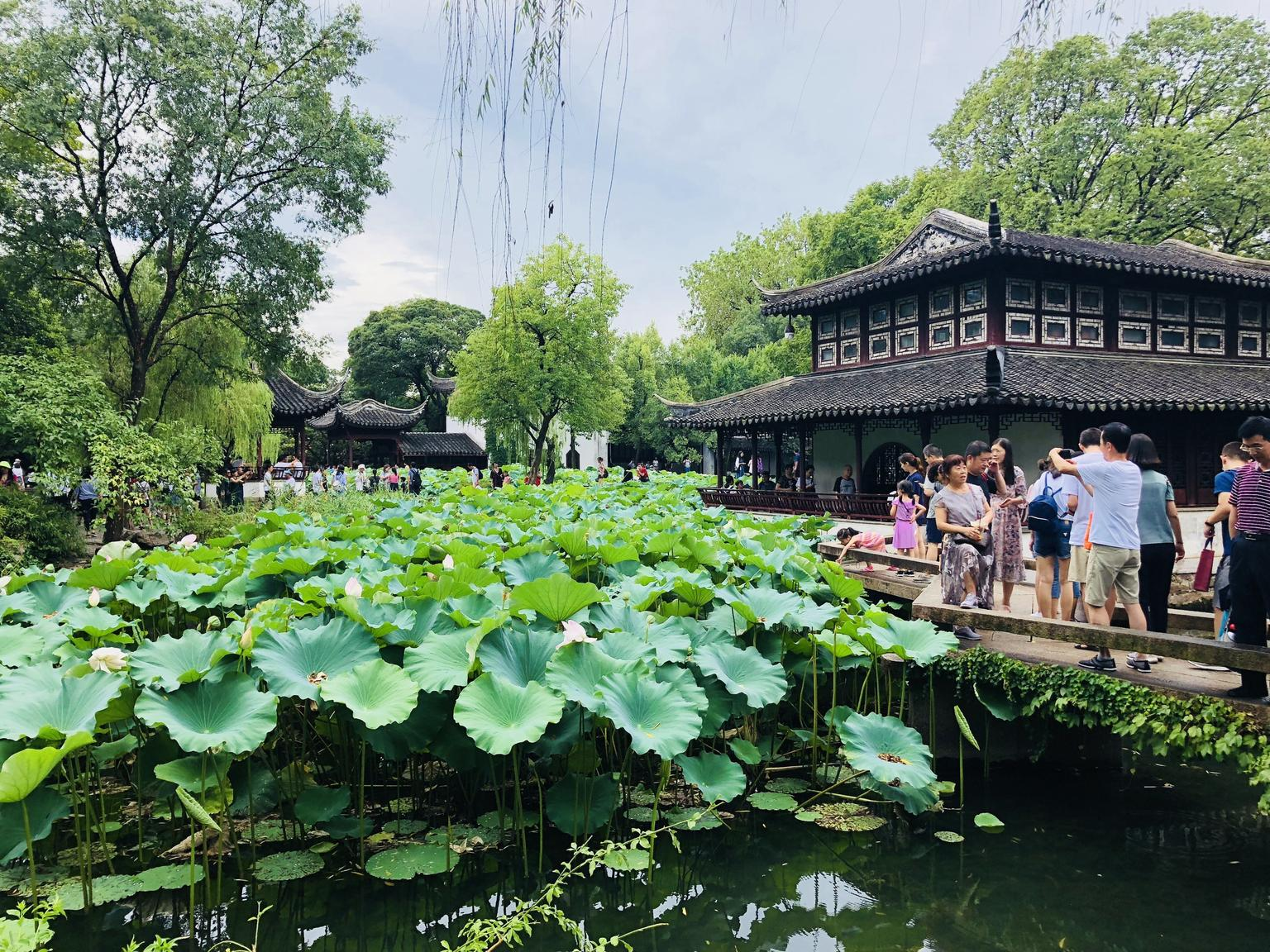 MÁS FOTOS, Private Suzhou Day Trip from Shanghai by Bullet Train with All Inclusive Option