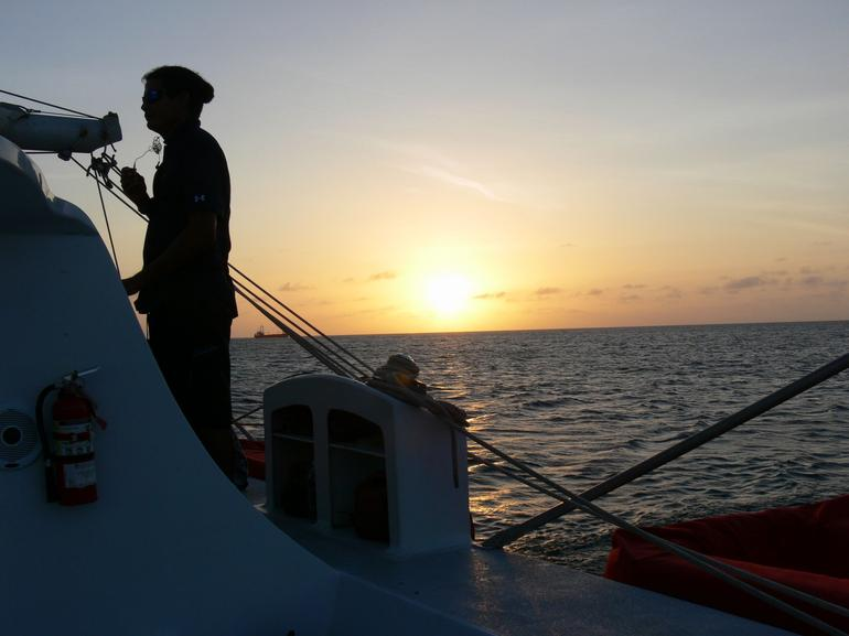 A vigilant eye - Aruba