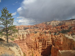 looking down into Bryce Canyon , Adam M - April 2016