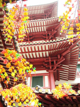 Buddha Tooth Relic Temple , fionatully - October 2015