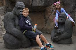 Sydney Taronga Zoo General Entry Ticket, Paula - June 2015