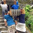 Private Day Trip: Highlights of Ubud & Mount Batur Volcano, Seminyak, INDONESIA
