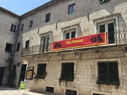 There's a cat museum in Kotor for all the cat lovers! , Mimi L - July 2016
