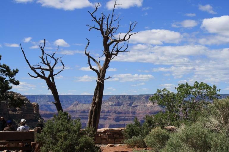 Grand Canyon - Phoenix