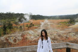 The sulphur banks and steam , Celine - January 2014