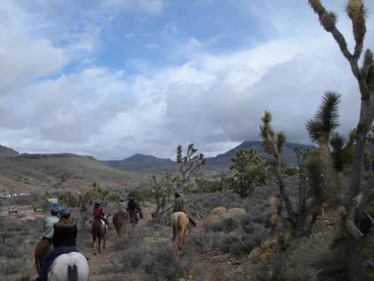 Riding Horses - Las Vegas