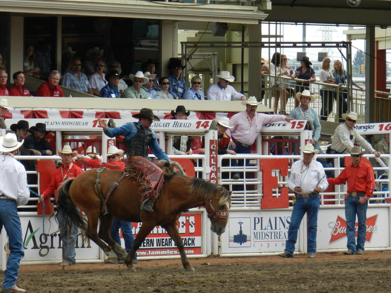 Rodeo - Calgary