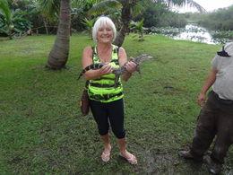 Everglades , Krystyna E - November 2015