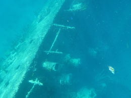 Sunken German Ship , Dave B - February 2016