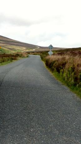 Winding road in Wicklow , Mary C - June 2017
