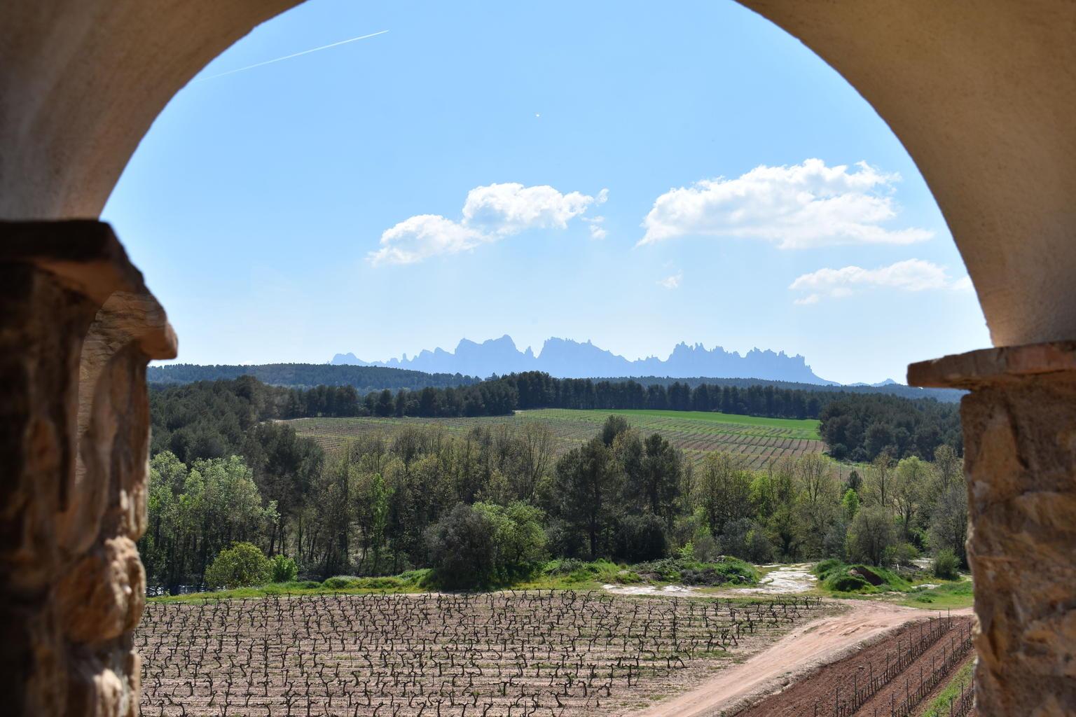 MÁS FOTOS, Excursión de medio día a Montserrat con tapas y vinos gourmet desde Barcelona