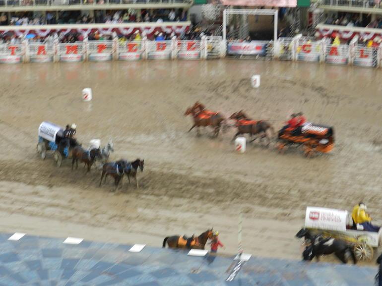 Chuckwagon racing - Calgary
