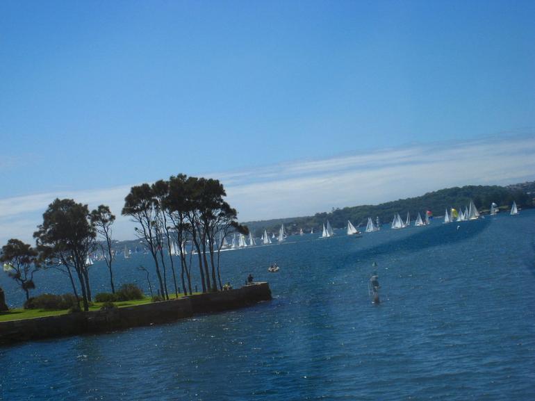 Shark Bay - Sydney
