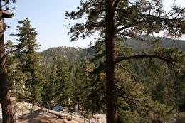 View from walking trail , Jan S - July 2013