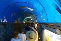 Train tunnel , Angel F - October 2016