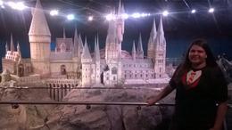 A maquete do Castelo de Hogwarts é indescritivelmente MARAVILHOSA!!!! A sala tem uma pegada melancólica, mas que não chega a ser triste. Obs.: Eu chorei de emoção quando..., ANA C - July 2014