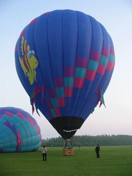 Fish Balloon - October 2009