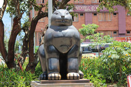 Botero's statue of a cat., Bandit - September 2012