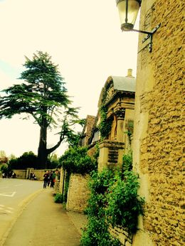 The guide told us that the village has been used in movies like Harry Potter and Pride and Prejudice. , Antonio P - May 2015