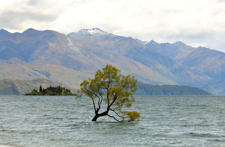 Arrowtown and Wanaka Premium Tour from Queenstown photo 15