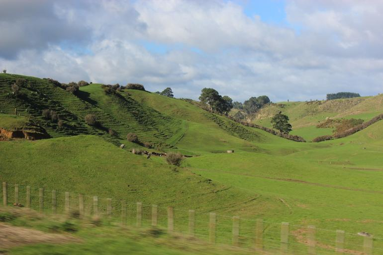 2 Day Waitomo Caves, Hobbiton Movie Set and Rotorua Tour from Auckland photo 19