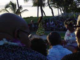 Traditional Hawaian Dances , David H - September 2012