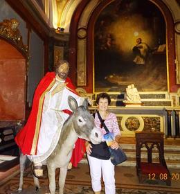 Popes tour. , Tours - December 2014