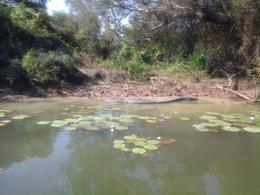Kakadu National Park and Arnhem Land, Kierra - July 2014