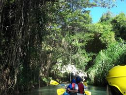 The Rio Bueno was a tight river, but could easily hold our group of kayakers. The scenery was fantastic. They stop us off at a rope swing, and the river empties us into the ocean where we can hang ... , James S - January 2013