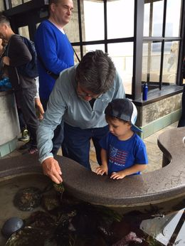 Fun times with Gramps at the Monterey Bay Aquarium, Mo Burns - July 2015