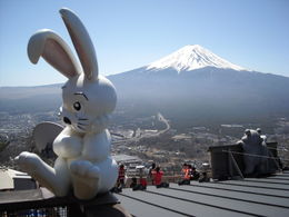 Super Blick auf den Fuji , Peter H - April 2015