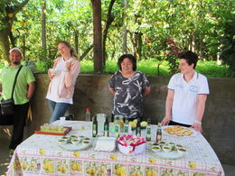 Olive oil and limoncello tasting, with family members , janhutchings55 - June 2016