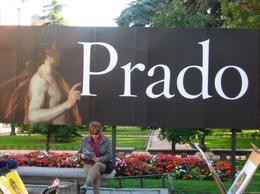 The Prado Museum, Cat - January 2012