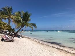 Playa Blanca Beach , tmynagy - February 2017