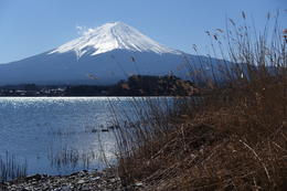 Mt. Fuji view , Dameon G - February 2017
