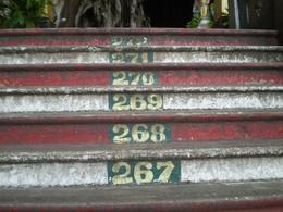 Well ...step 272 , I made it to the top only to find a sign that said 'Any Extreme Exercising' was forbidden .. let me tell you after climbing 272 steps I couldn't stop laughing !, Leiza - December 2008
