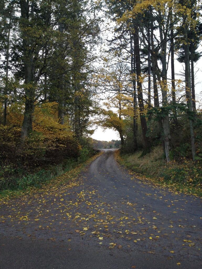 Behind Loch Ness - Scotland