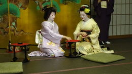 Geiko and Maiko, explaining how to play drink games. , JOSE MARIA M - November 2015
