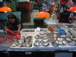 Fish vendor - August 2012