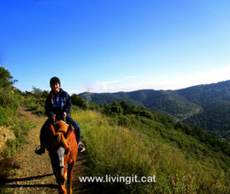 Beautiful views on the trails of Collserola. , Ted L - December 2014