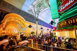 The Fremont Street Experience as seen from the top of the Big Bus., Viator Insider - December 2017