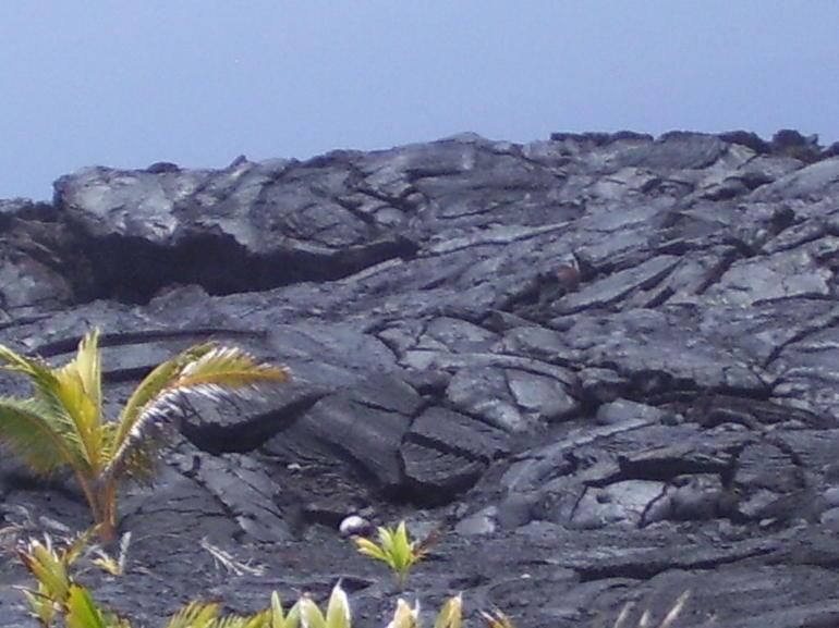 455 - Oahu