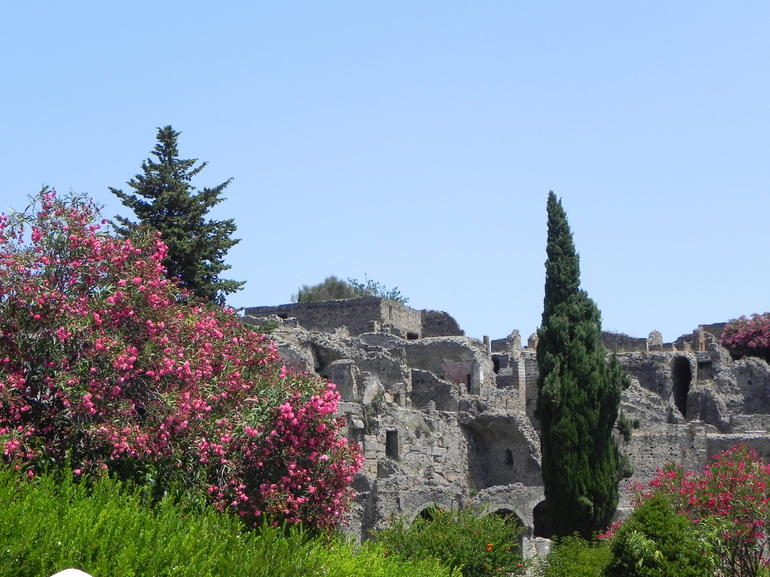 A view of the ruins in Pompeii -