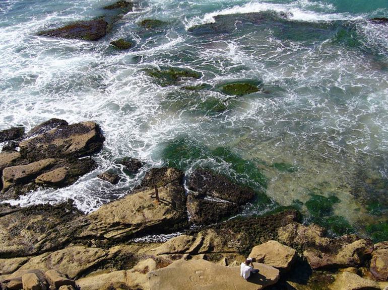 Bondi Rocks - Sydney